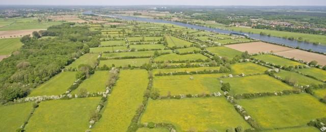 Het historische cultuurlandschap de Maasheggen in vogelvlucht